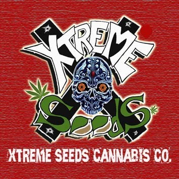 Xtreme Seeds Co.