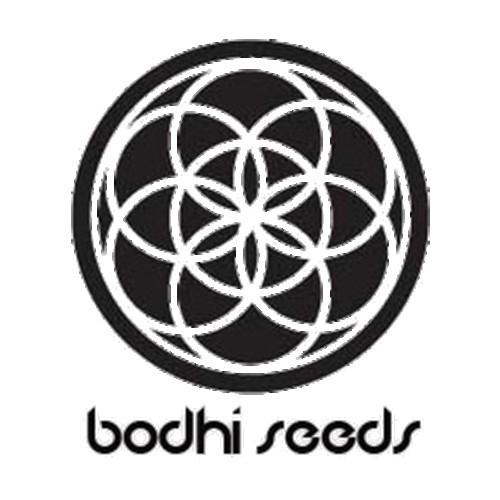 Zuvuya was produced by Bodhi Seeds