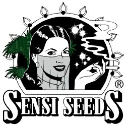Afghani #1 was produced by Sensi Seeds