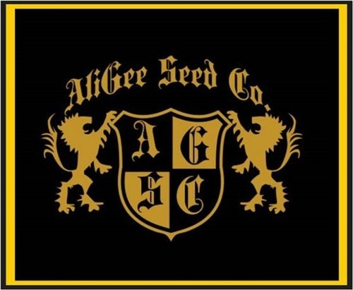AliGee Seed Co.