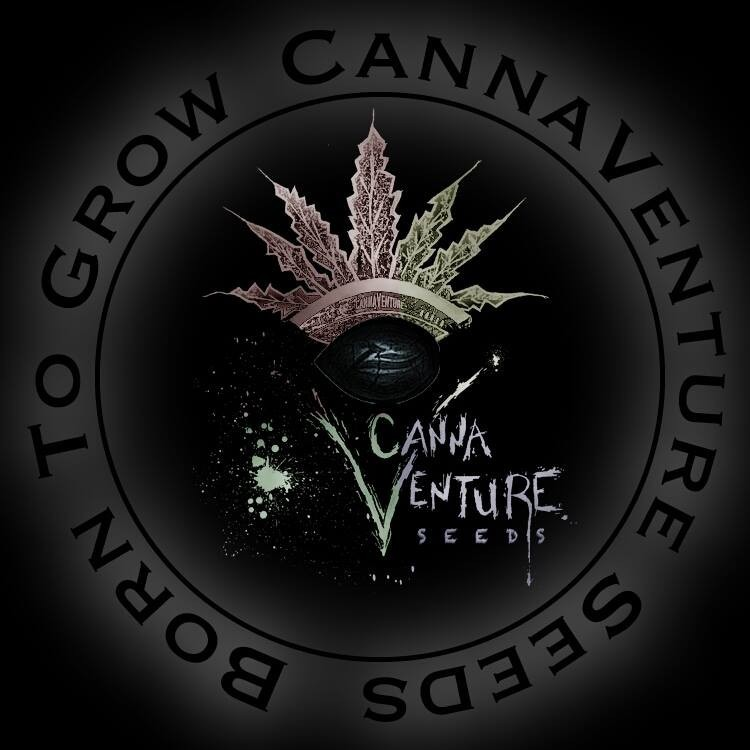 425 was produced by CannaVenture