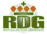 Zion was produced by Royal Dutch Genetics