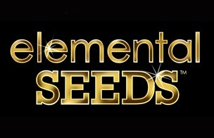 5th Element was produced by Elemental Seeds