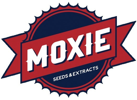 ZOD OG was produced by Moxie Seeds