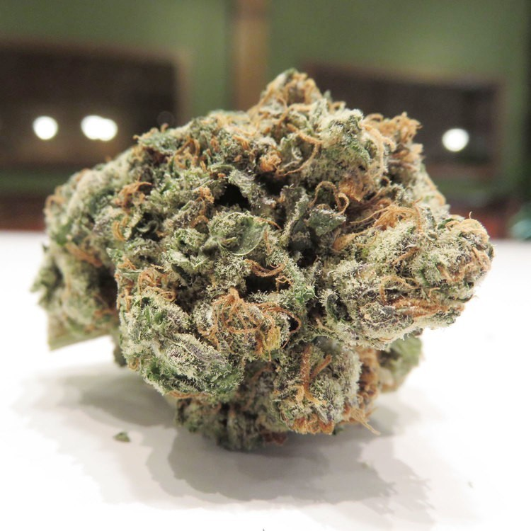 Image of Blouie (Louie Blue OG)