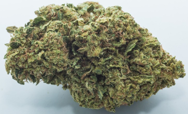 Image of Diesel Cookies