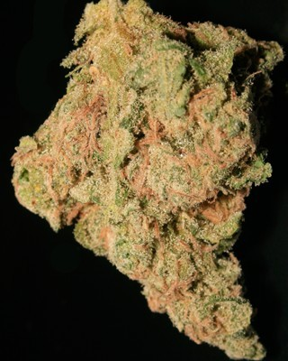 Image of Dreamwreck