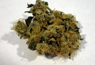 Image of Chem Dawg (Chemdog)