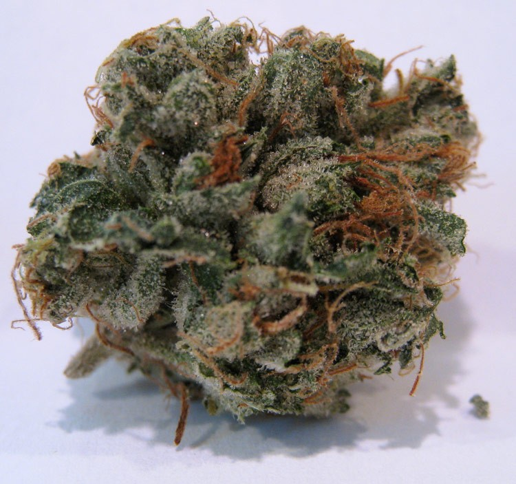 Image of 707 Headband
