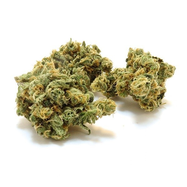 Image of Double Dip Blue Dream