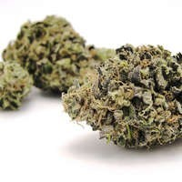 Image of Blueberry Yum Yum