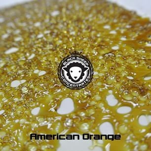 Image of American Orange