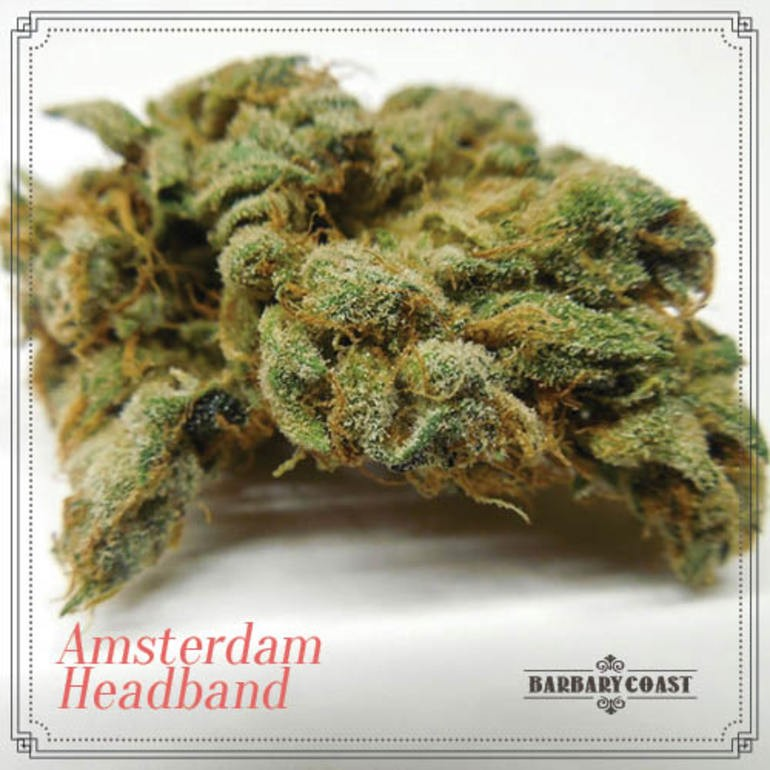 Image of Amsterdam Headband