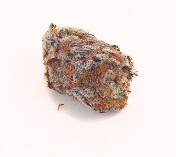 Image of Chocolate Hashplant