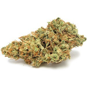 Image of Blueberry Jack