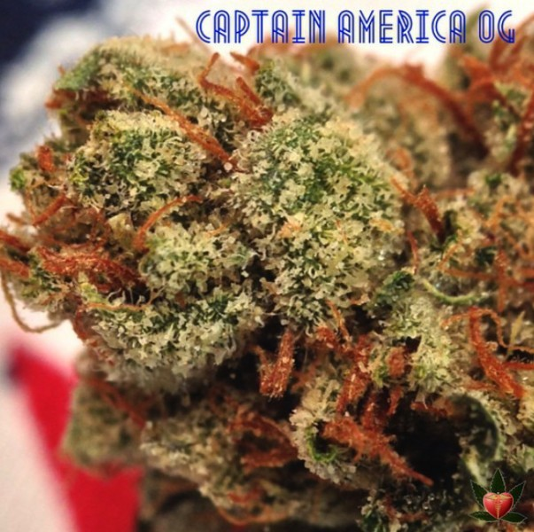 Image of Captain American OG